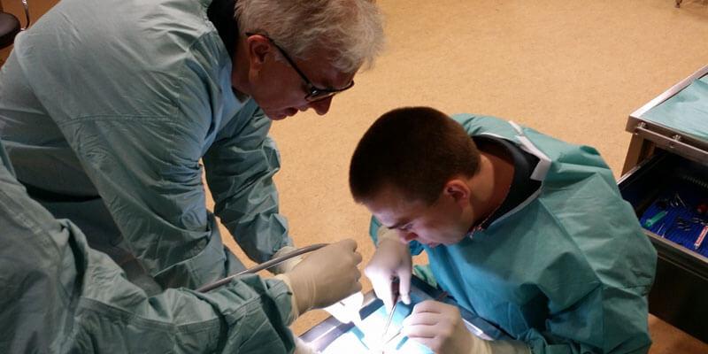 Szkolenia Cadaver Lab – Uniwersytet Medyczny