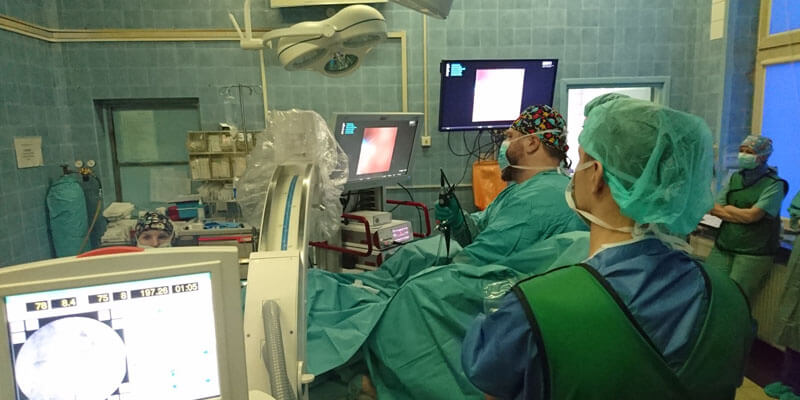 I Endoskopowe Warsztaty Usuwania Kamieni Nerkowych Metodą RIRS